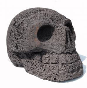 Rare Specimen Skull Carving Rock