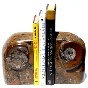 Fossils Decor Bookends