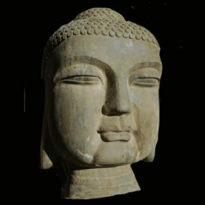 Rare Specimen Statue
